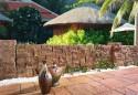 Acapulco melanż letni