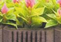 small_gazon-trapezowy-1401387542
